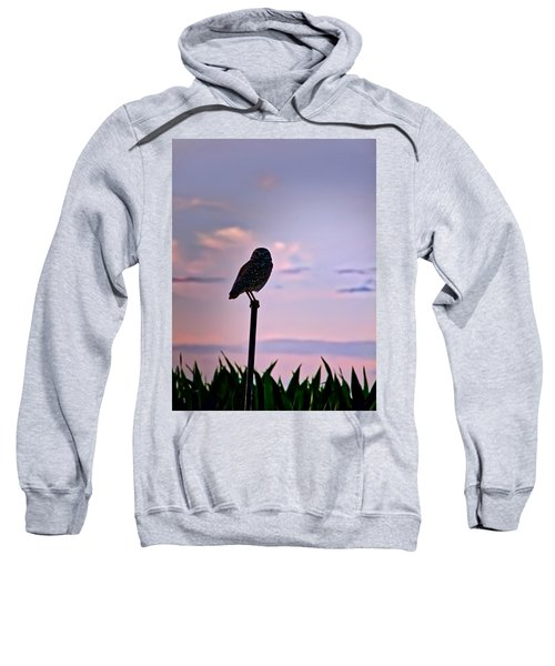Burrowing Owl On A Stick Sweatshirt