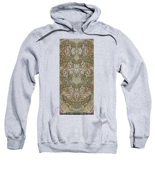 Desert Wall Sweatshirt
