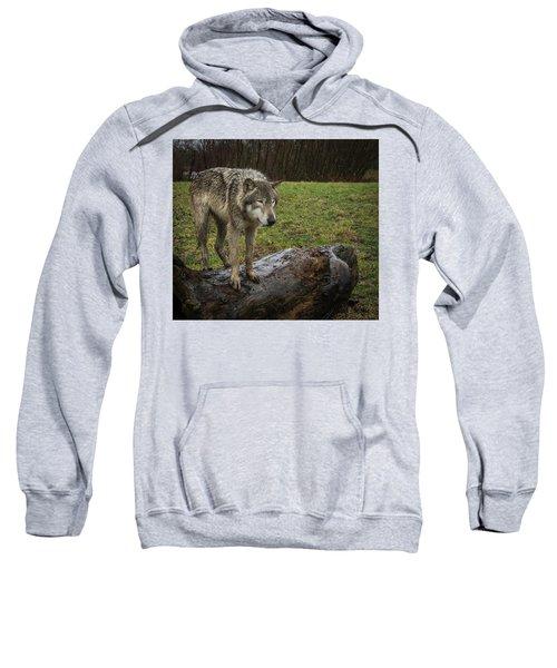 Hangin On The Log Sweatshirt