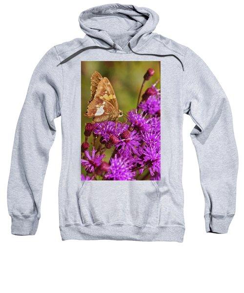 Moth On Purple Flowers Sweatshirt