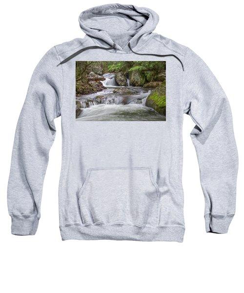 On The Trail To Cascade Falls Sweatshirt