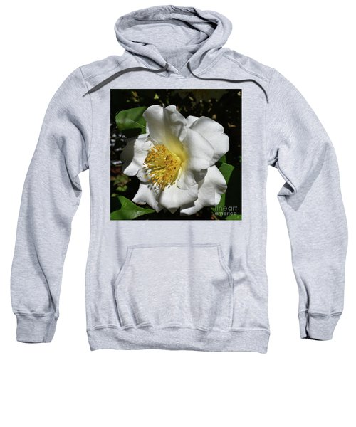 Painted White Camelia Sweatshirt