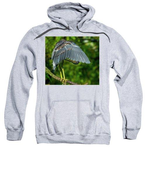 Preening Reddish Heron Sweatshirt
