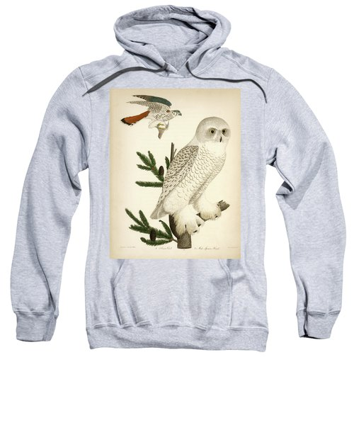 1. Snow Owl. 2. Male Sparrow-hawk. Sweatshirt