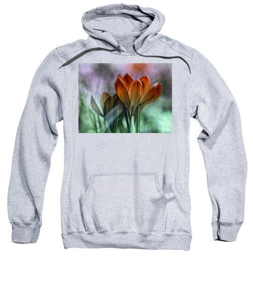 Spring Blossom Sweatshirt