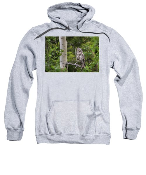 B14 Sweatshirt