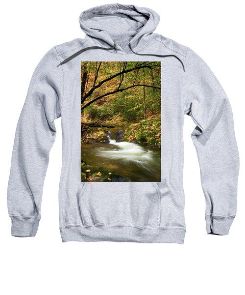 Water Swirl Sweatshirt