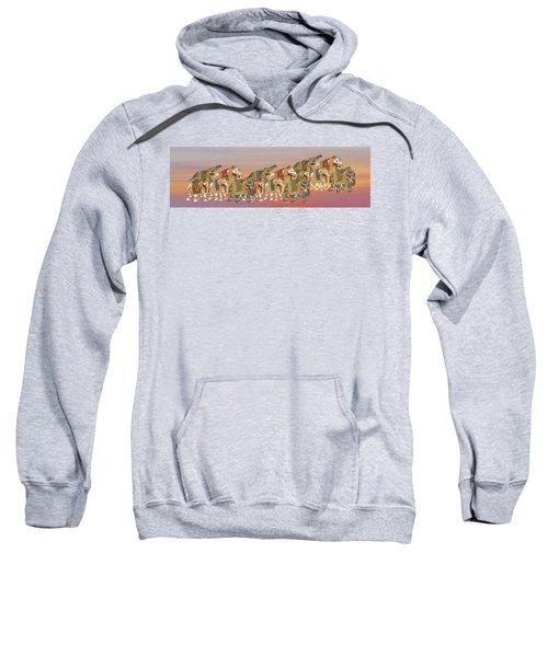 Caparisoned Elephants   Sweatshirt
