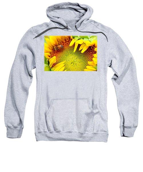 Peek-a-boo Sweatshirt