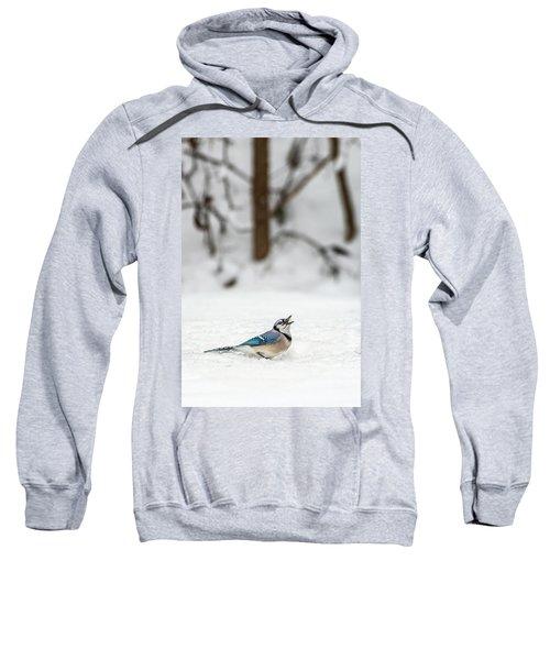 2019 First Snow Fall Sweatshirt