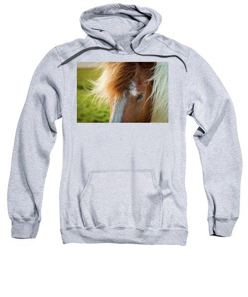 Icelandic Horse Sweatshirt