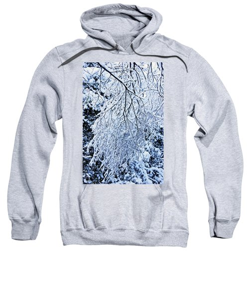 30/01/19  Rivington. Snow Covered Branches. Sweatshirt