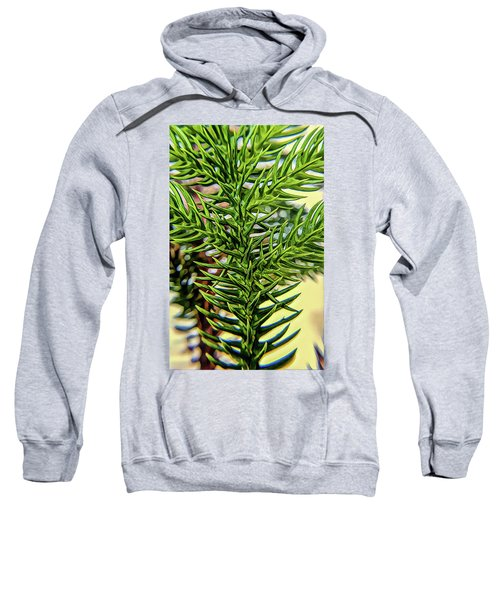 Patterns Sweatshirt