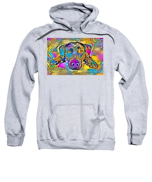 A Dog Lies In Bright And Colourful Colours Sweatshirt
