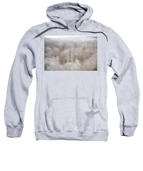 A Ghost Of Trees Sweatshirt