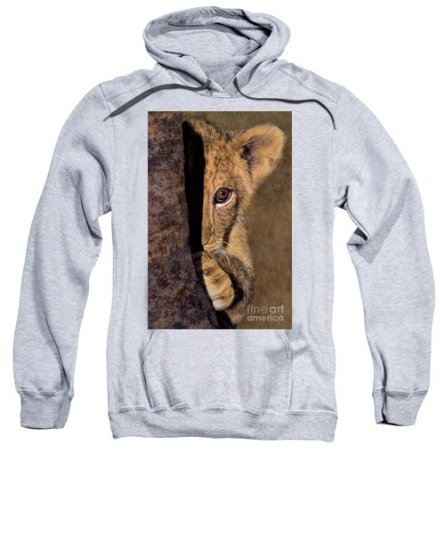 A Lion Cub Plays Hide And Seek Wildlife Rescue Sweatshirt