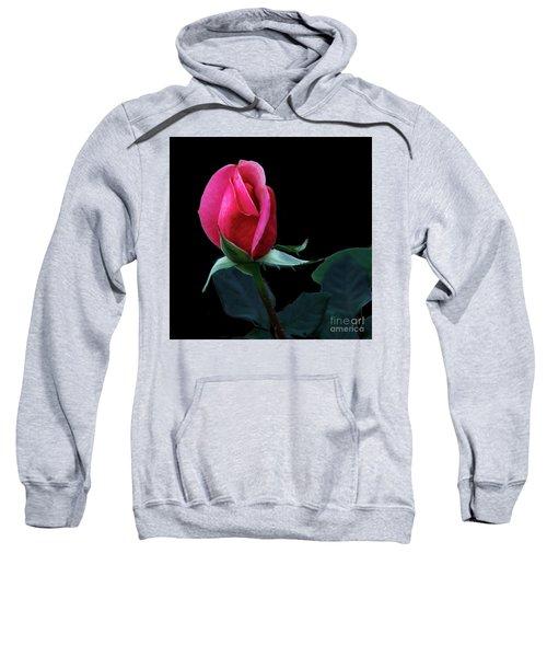 A Special Rose Bud Sweatshirt