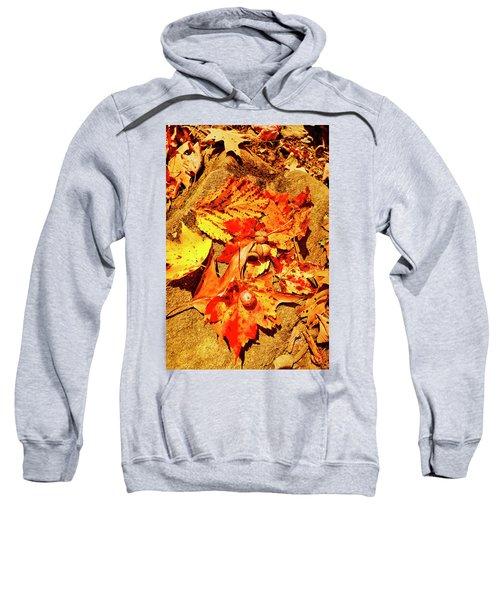 Acorns Fall Maple Oak Leaves Sweatshirt