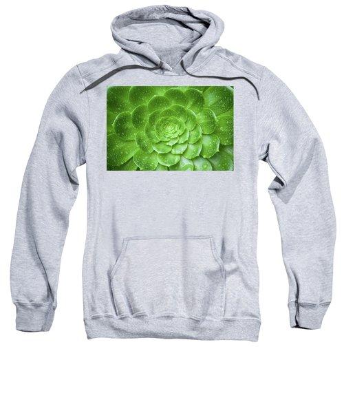 Aenomium 3916 Sweatshirt