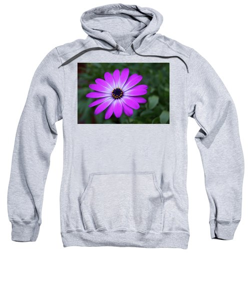 African Daisy Sweatshirt
