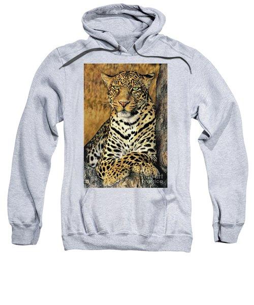 African Leopard Portrait Wildlife Rescue Sweatshirt
