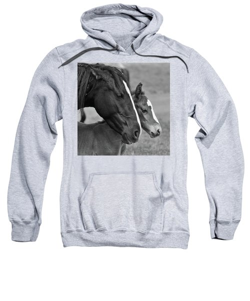 All The Love Sweatshirt