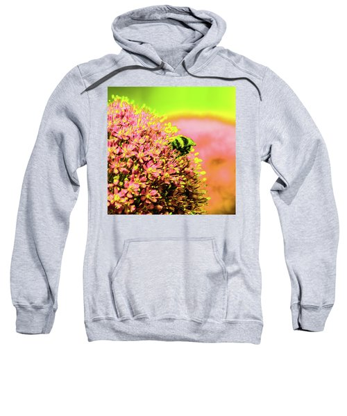 Allium With Bee 1 Sweatshirt