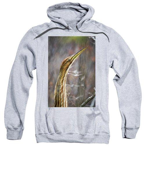 American Bittern Sweatshirt