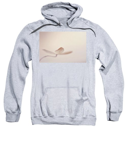 And Also Sweatshirt