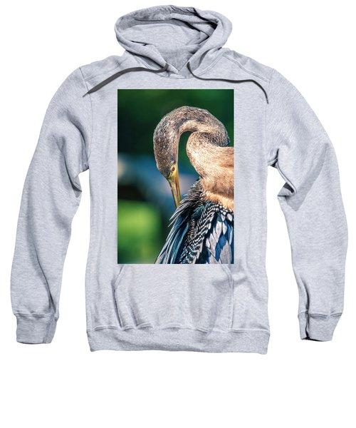 Anhinga Grooming Sweatshirt