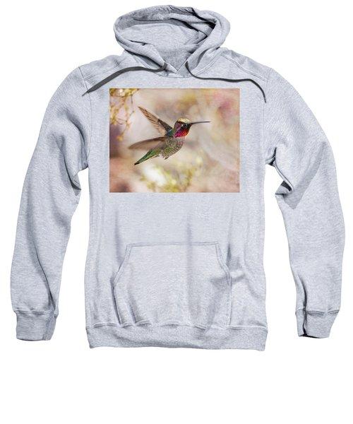 Anna's Hummingbird Sweatshirt