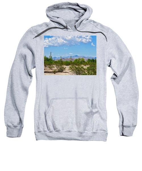 Arizona Desert Hidden Valley Sweatshirt