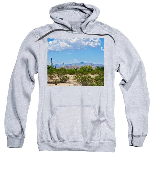 Arizona Desert Hidden Valley Sweatshirt