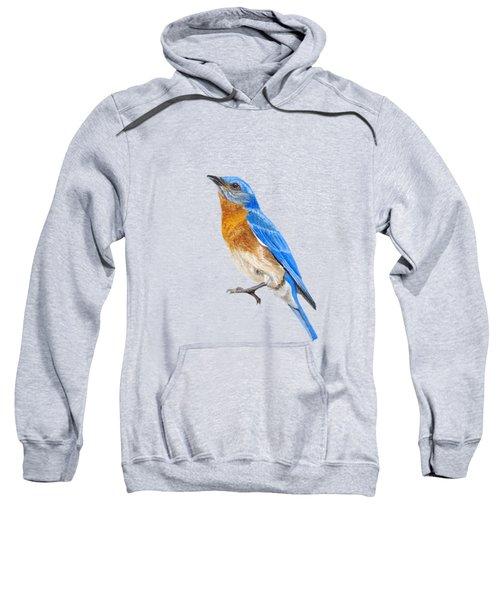 Cute Eastern Bluebird  Sweatshirt