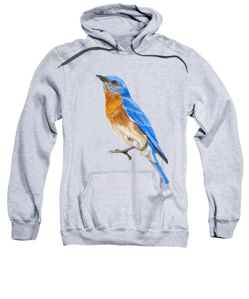 Cute Eastern Bluebird  Sweatshirt