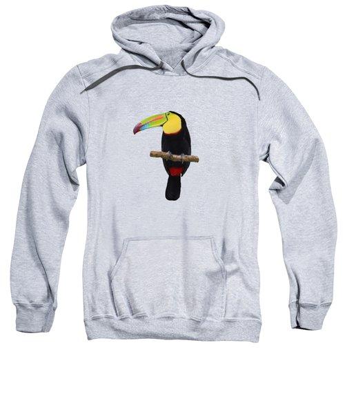 Keel-billed Toucan Costa Rica Sweatshirt