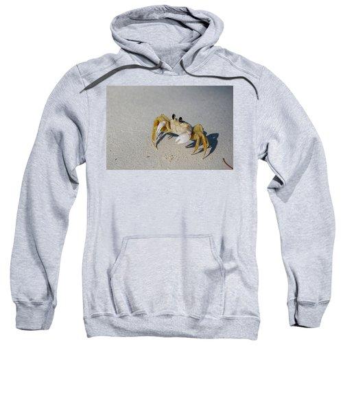 Atlantic Ghost Crab Sweatshirt