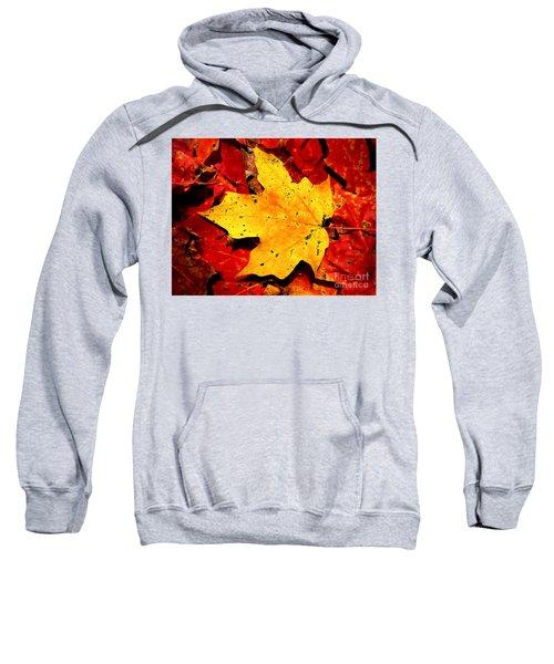 Autumn Beige Yellow Leaf On Red Leaves Sweatshirt