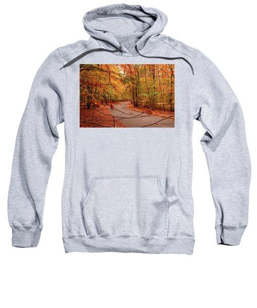 Autumn In Holmdel Park Sweatshirt