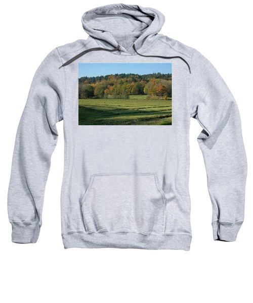 Autumn Scenery Sweatshirt