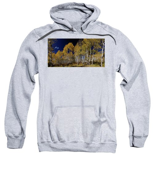 Sweatshirt featuring the photograph Autumn Walk In The Woods by James BO Insogna