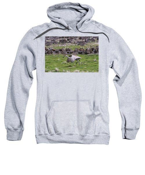 B27 Sweatshirt