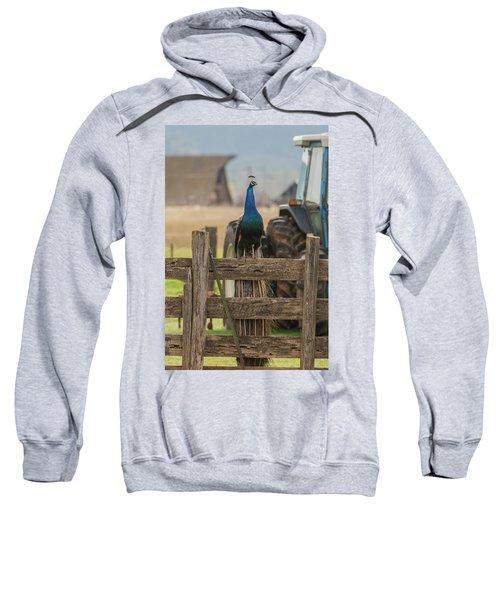 B33 Sweatshirt