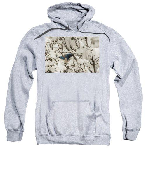 B44 Sweatshirt