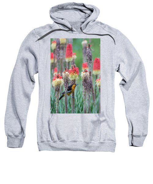 B58 Sweatshirt
