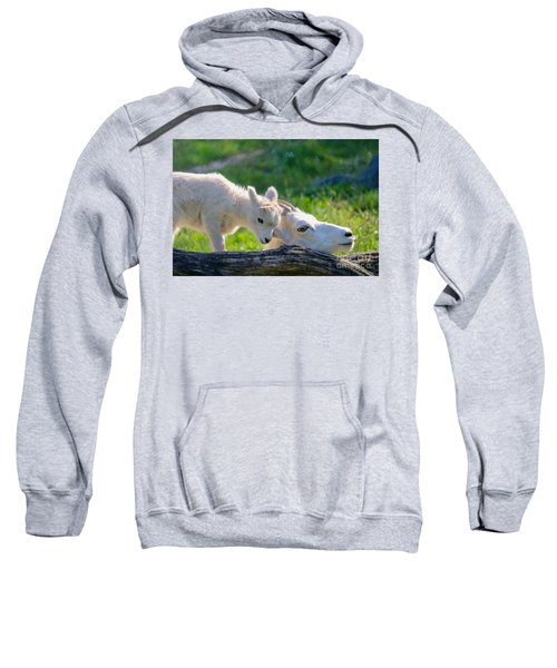 Baby Loves Mama Sweatshirt