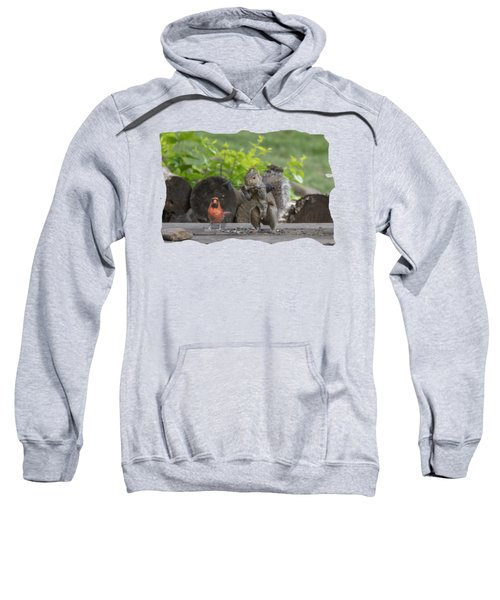 Backyard Squirrel Working Out With Trainer Sweatshirt