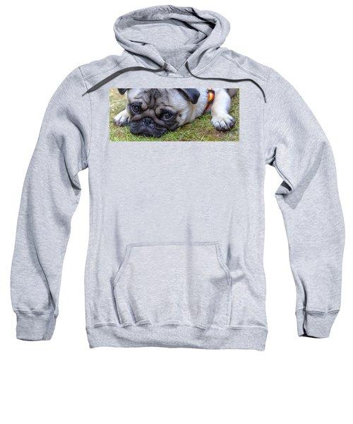 Bailey Sweatshirt