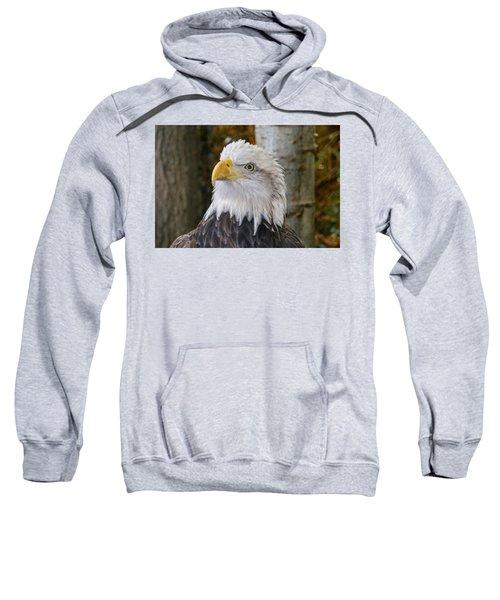 Bald Eagle Portrait Sweatshirt
