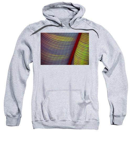 Banana Leaf 8597 Sweatshirt